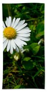 Miniature Daisy In The Grass Beach Towel