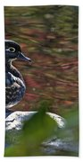 Missy Wood Duck Beach Towel