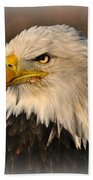 Misty Eagle Beach Towel