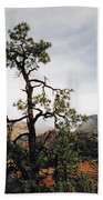Misty Morning In Zion Canyon Beach Towel