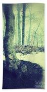 Misty Winter Woods Beach Towel