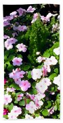 Mixed Impatiens In Dappled Shade Beach Towel