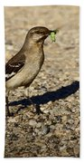 Mockingbird Meal Beach Towel