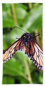Monarch Butterfly In Flight Beach Towel
