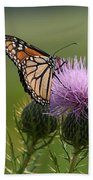 Monarch Butterfly On Bull Thistle Wildflowers Beach Towel