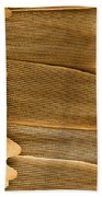 Monarch Butterfly Scales, Sem Beach Towel