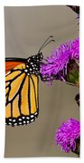 Monarch Beach Towel by Mircea Costina Photography