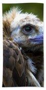 Monk Vulture Beach Towel