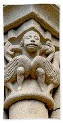 Monkey Man With Birds Beach Towel