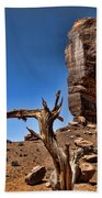 Monument Valley Lone Tree Beach Towel