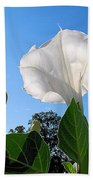 Moonflower Rising Beach Towel