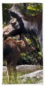 Moose Brunch Beach Towel