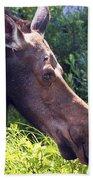 Moose Profile Beach Towel