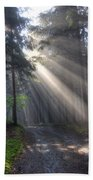 Morning Forest In Fog Beach Towel