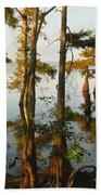 Morning In The Swamps Beach Towel