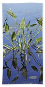 Morning Reflection Beach Towel