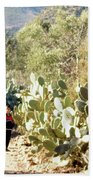 Moroccan People And Cacti Beach Towel