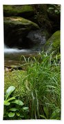 Moss And Water And Ambience Beach Towel