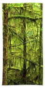 Moss-covered Trees Beach Towel