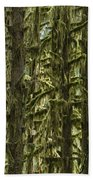 Moss Covered Trees, Hoh Rainforest Beach Towel