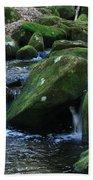 Moss Overflow Beach Towel