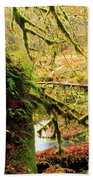 Mossy Bend Beach Towel
