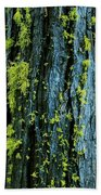 Mossy Compass Beach Towel