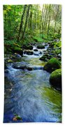 Mossy Rocks And Water   Beach Towel