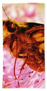 Moth Two Beach Towel
