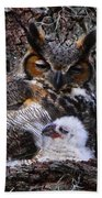 Mother And Baby Owl Beach Towel