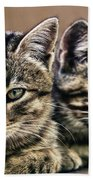 Mother And Child Wild Cats Beach Towel