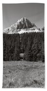 Mountain Peak Above The Tree Line Beach Towel