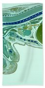 Mouse Embryo Beach Towel