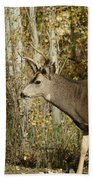 Mulie Buck 3 Beach Towel