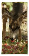 Mulie Buck 4 Beach Towel