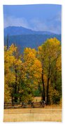 Murmur Of The Cottonwoods Beach Towel