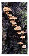 Mushroom Parade Beach Towel