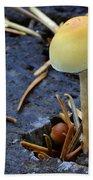 Mushrooms 1 Beach Towel