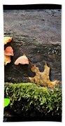 Mushy Chicks Beach Sheet