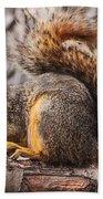 My Nut Beach Towel
