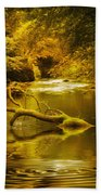 Mystery In Forest Beach Towel by Svetlana Sewell