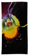 Nature's Amazing Colors - Pansy Beach Towel