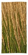 Nature's Own Gold Beach Towel