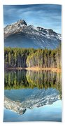 Nature's Reflections Beach Towel