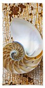 Nautilus Shell On Rusty Table Beach Towel
