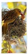Nesting Instinct Beach Towel by Carol Groenen