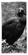 Nevermore - Black And White Beach Towel