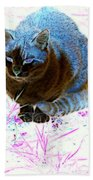 New Kitty Blue Beach Towel