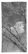 New Mexico Series - A Cloud Behind Black And White Beach Towel