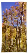 New Mexico Series - Autumn On The Mountain Beach Towel